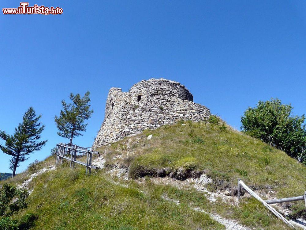 Le foto di cosa vedere e visitare a Carrega Ligure