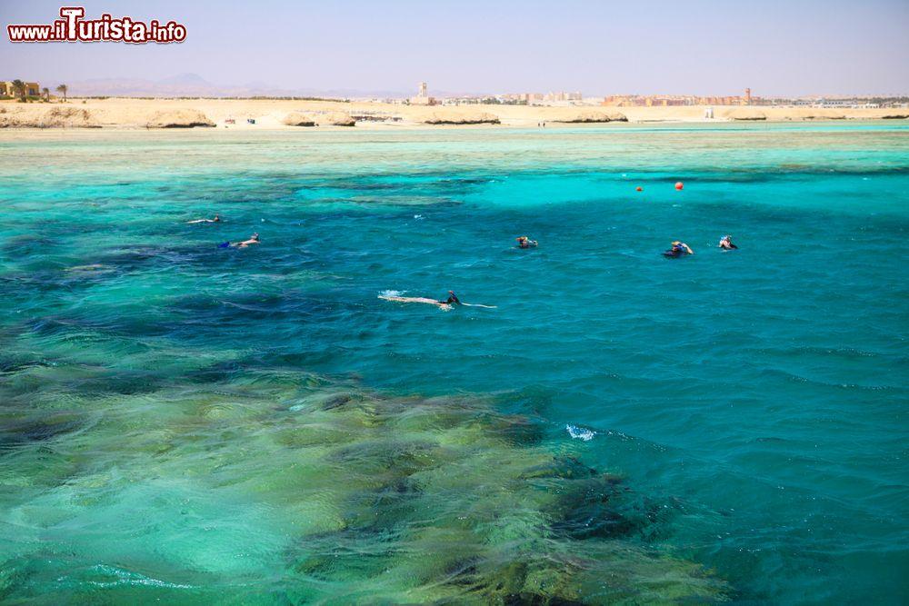 Le foto di cosa vedere e visitare a Port Ghalib