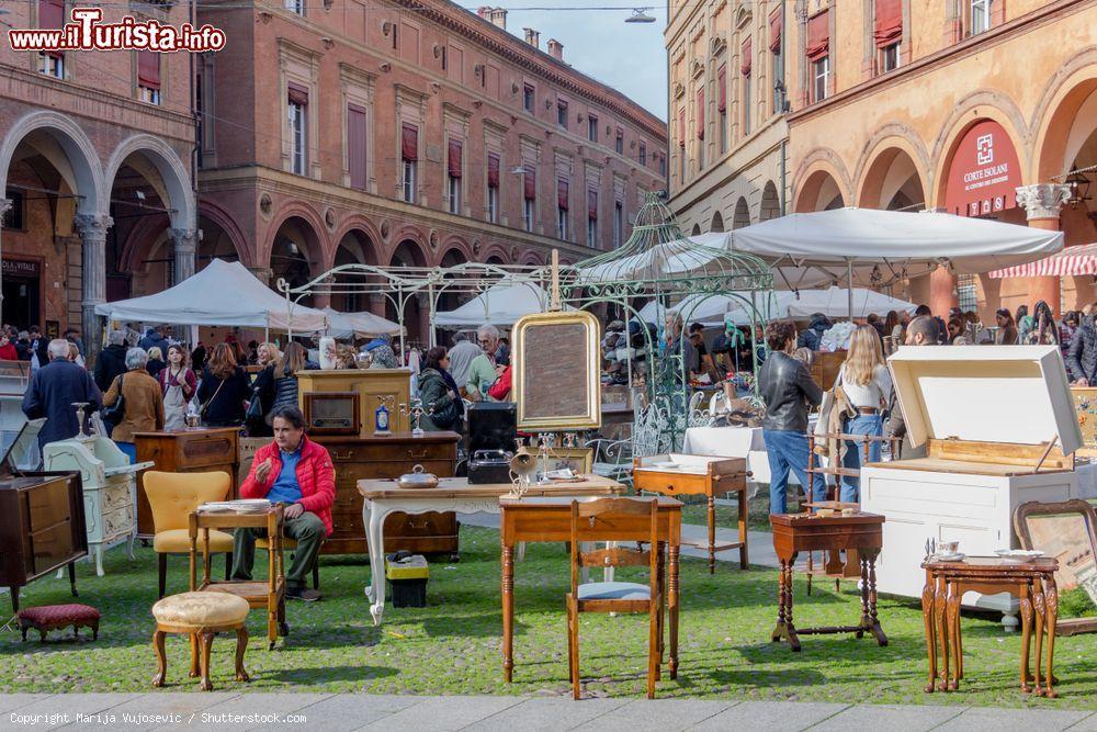 Mercato Antiquario Città di Bologna Bologna