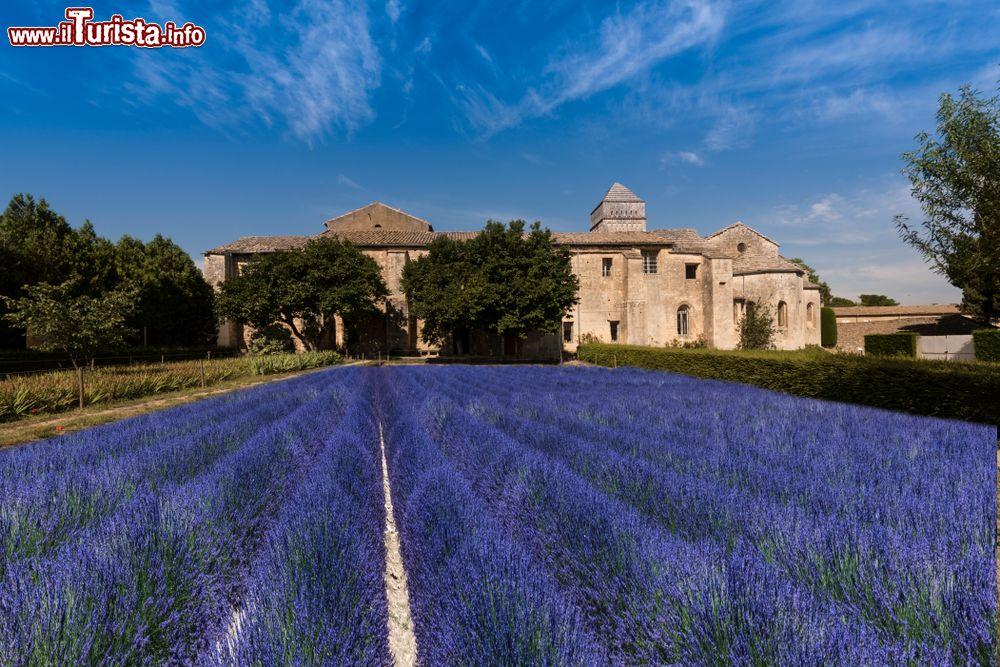 Le foto di cosa vedere e visitare a Saint-Rémy-de-Provence