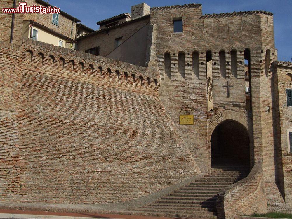 Le foto di cosa vedere e visitare a Serra de' Conti