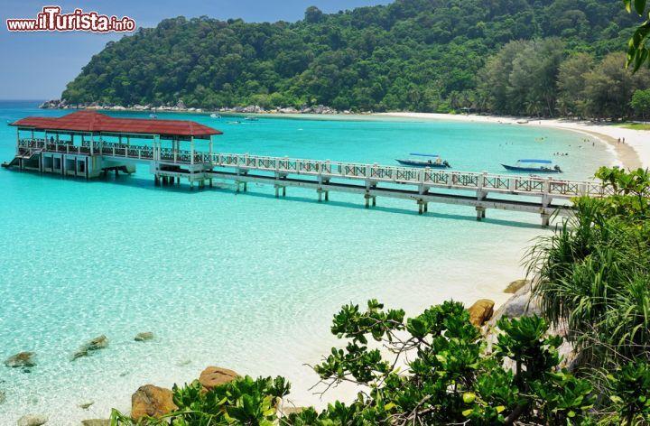 Le foto di cosa vedere e visitare a Malesia