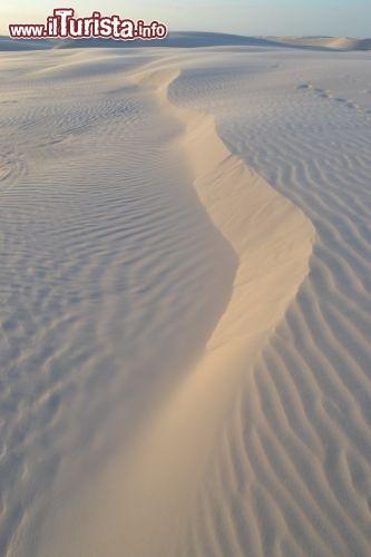 Un particolare delle forme sinuose delle dune foto for Setacciavano la sabbia dei fiumi