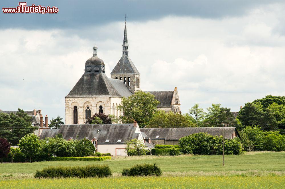 Le foto di cosa vedere e visitare a Saint-Benoit-sur-Loire