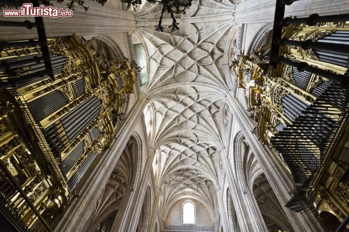 Interno della cattedrale di segovia spagna splendido for Soffitto della cattedrale di legno