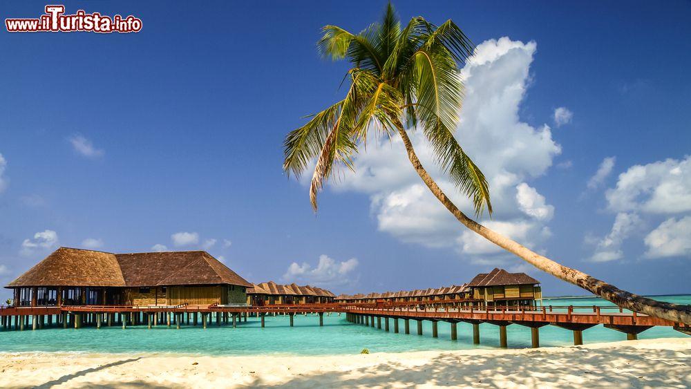 Spiaggia e bungalow su di una isola dell 39 atollo foto for Fantastici disegni di bungalow
