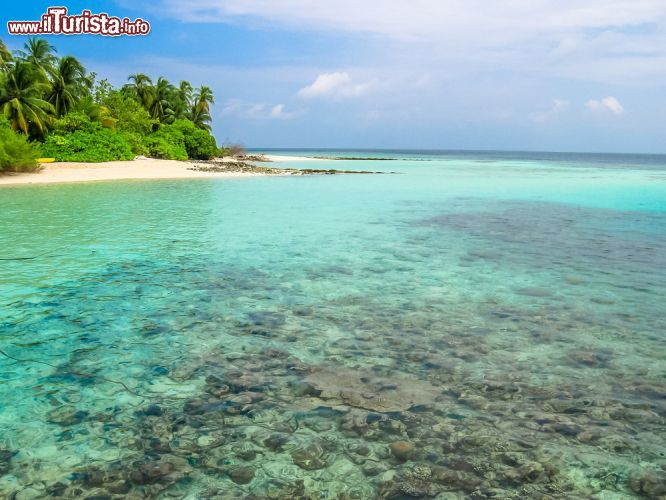 Le foto di cosa vedere e visitare a Atollo Male Nord