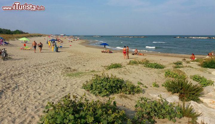 La bella spiaggia libera di casalborsetti ravenna - Immagini da colorare la spiaggia ...