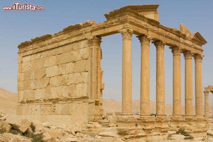 Le foto di cosa vedere e visitare a Palmira