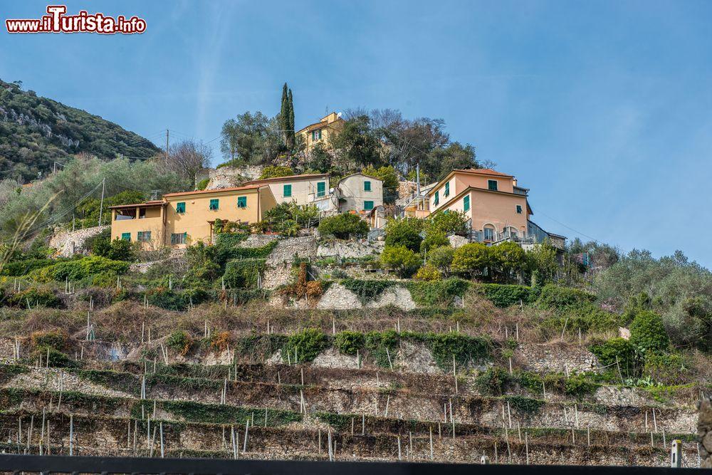 Terrazzamenti e case nella valle di Finalborgo ... | Foto Finalborgo