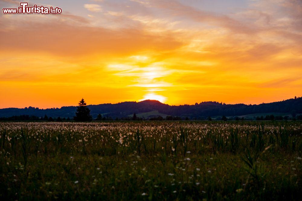 Le foto di cosa vedere e visitare a Murnau am Staffelsee