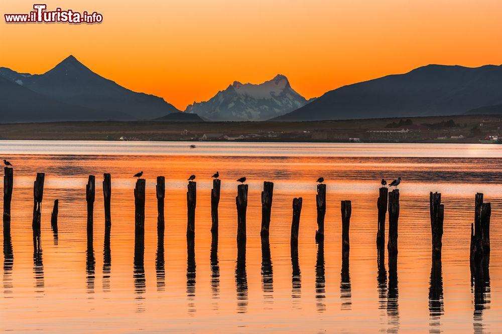 Le foto di cosa vedere e visitare a Puerto Natales