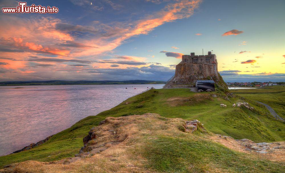 Le foto di cosa vedere e visitare a Lindisfarne