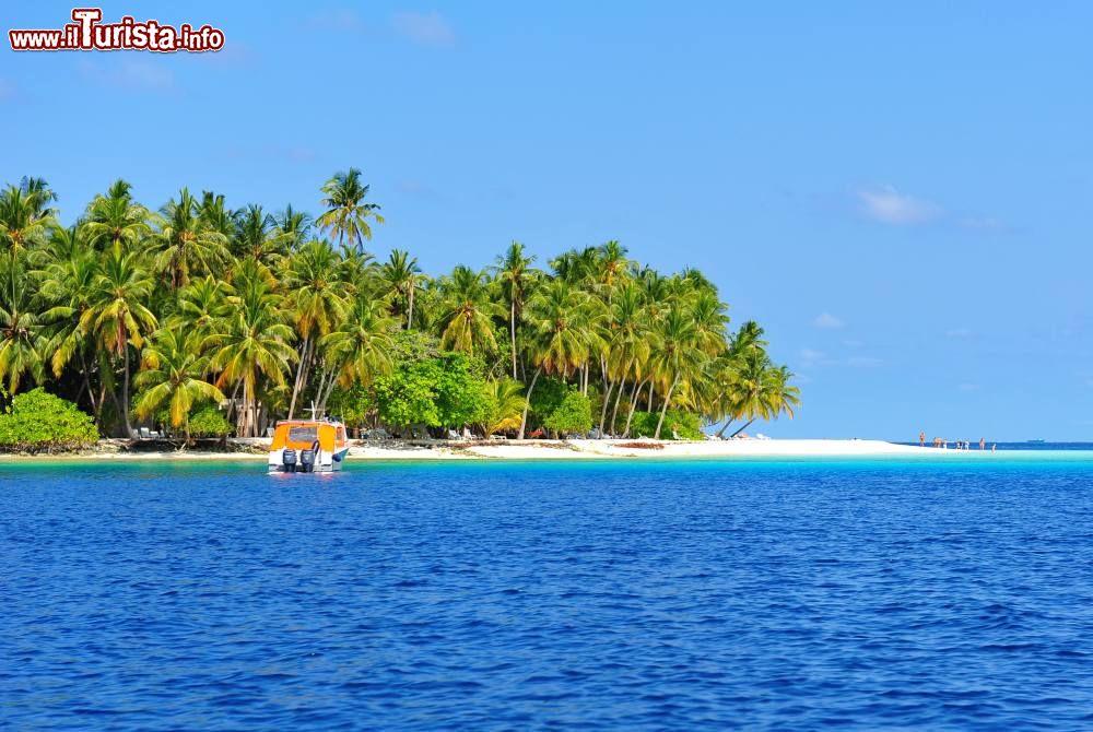 Le foto di cosa vedere e visitare a Laccadive