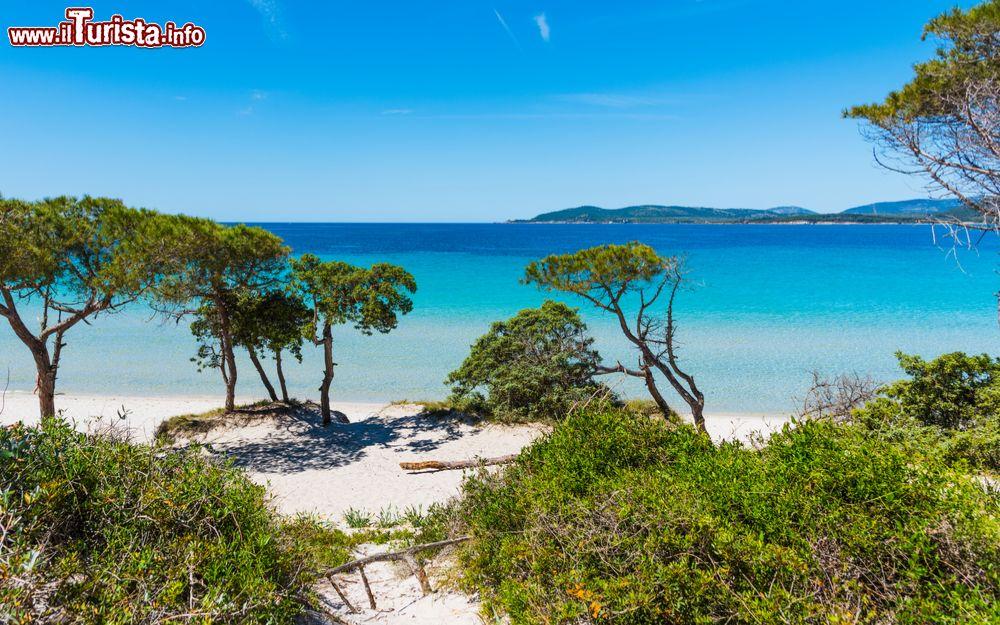 Cartina Spiagge Sardegna Nord.Le Spiagge E Le Calette Piu Belle Di Alghero