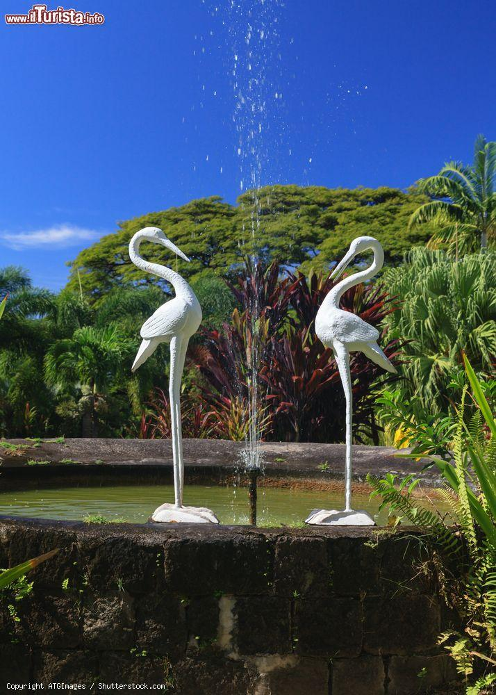Immagine Una fontana nei giardini di Romney Manor a Basseterre, St. Kitts and Nevis, Indie Occidentali - © ATGImages / Shutterstock.com