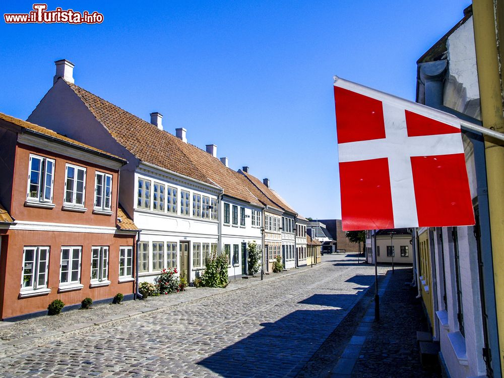 Le foto di cosa vedere e visitare a Odense