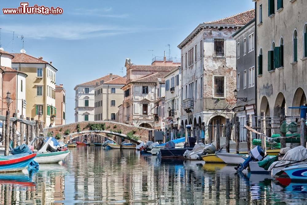 Le foto di cosa vedere e visitare a Chioggia