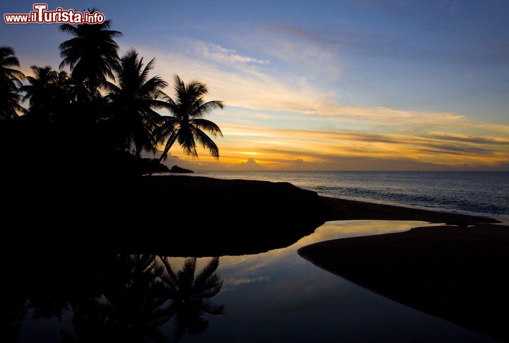Le foto di cosa vedere e visitare a Trinidad e Tobago