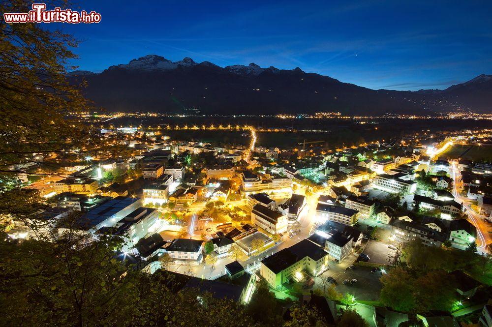 Le foto di cosa vedere e visitare a Vaduz