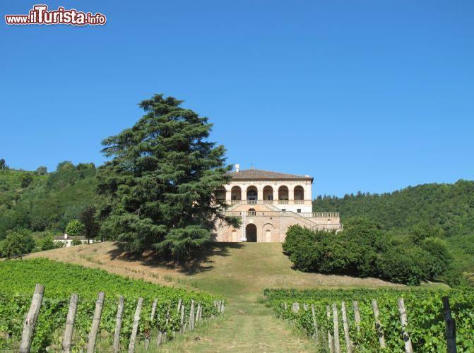Le foto di cosa vedere e visitare a Torreglia