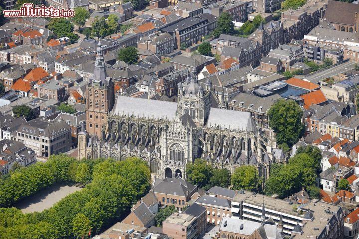 Le foto di cosa vedere e visitare a Den Bosch