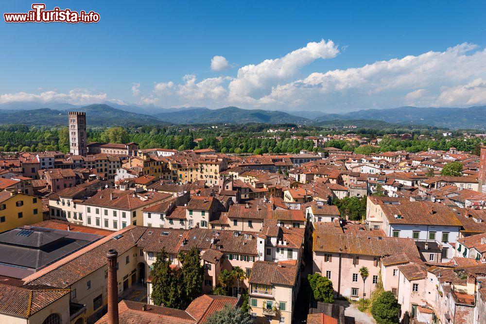 Le foto di cosa vedere e visitare a Lucca