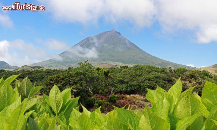 Le foto di cosa vedere e visitare a Pico