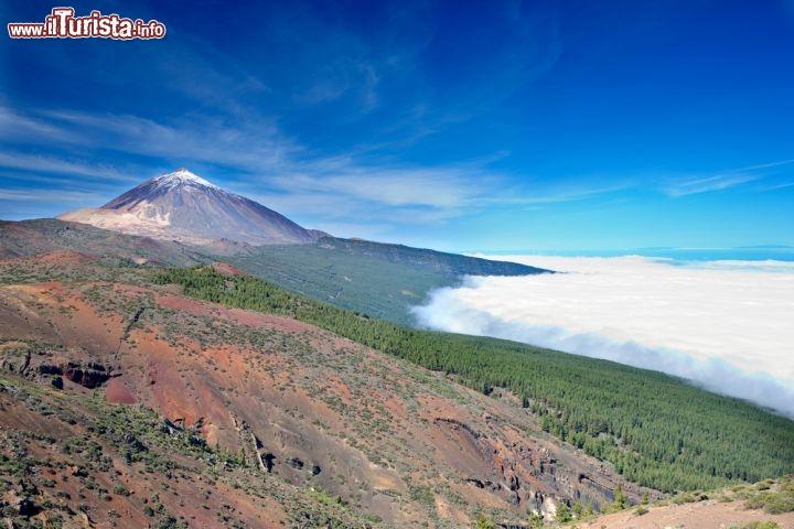Le foto di cosa vedere e visitare a Tenerife