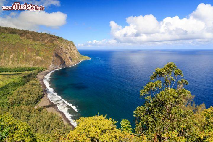 Le foto di cosa vedere e visitare a Isola di Hawaii