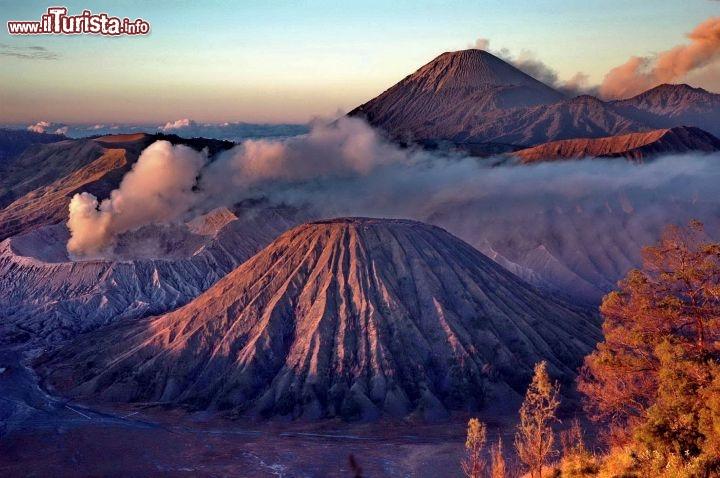 Le foto di cosa vedere e visitare a Java