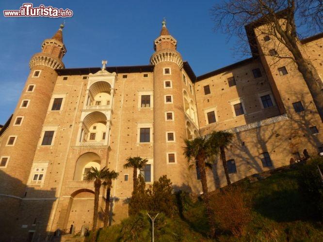 Le foto di cosa vedere e visitare a Urbino