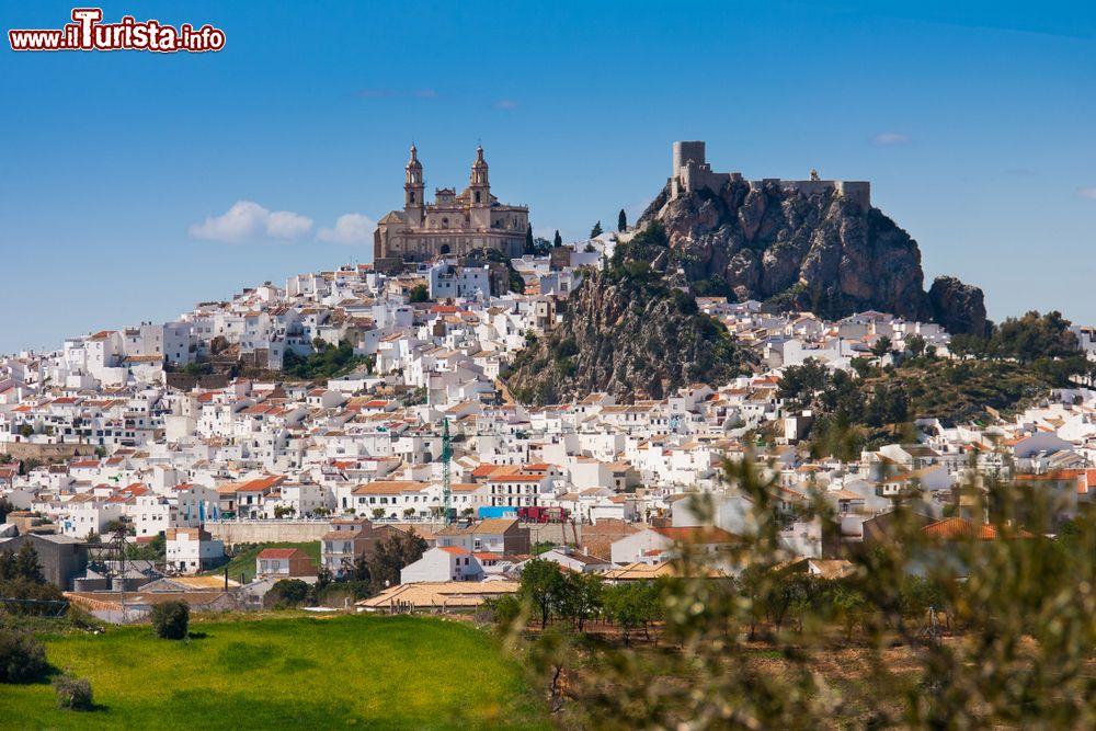 Le foto di cosa vedere e visitare a Andalusia