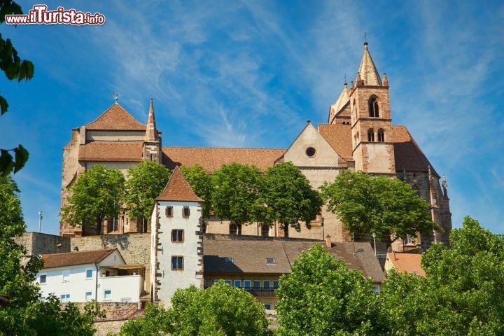 Le foto di cosa vedere e visitare a Breisach am Rhein