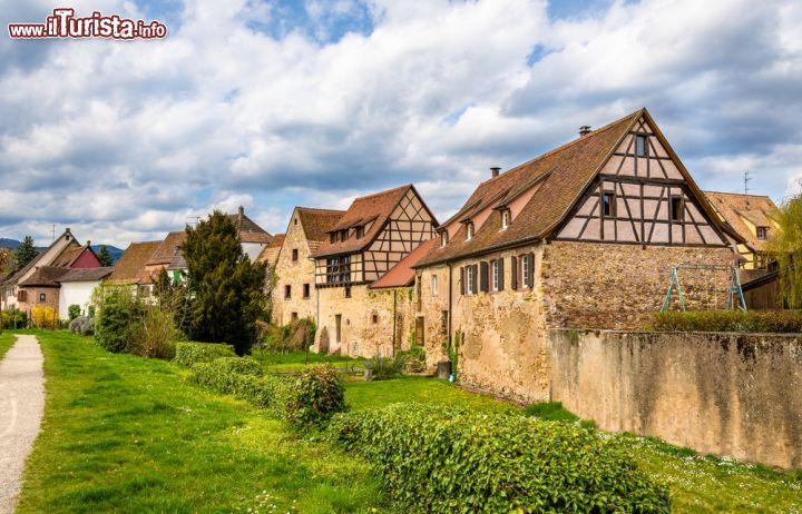Le foto di cosa vedere e visitare a Bergheim