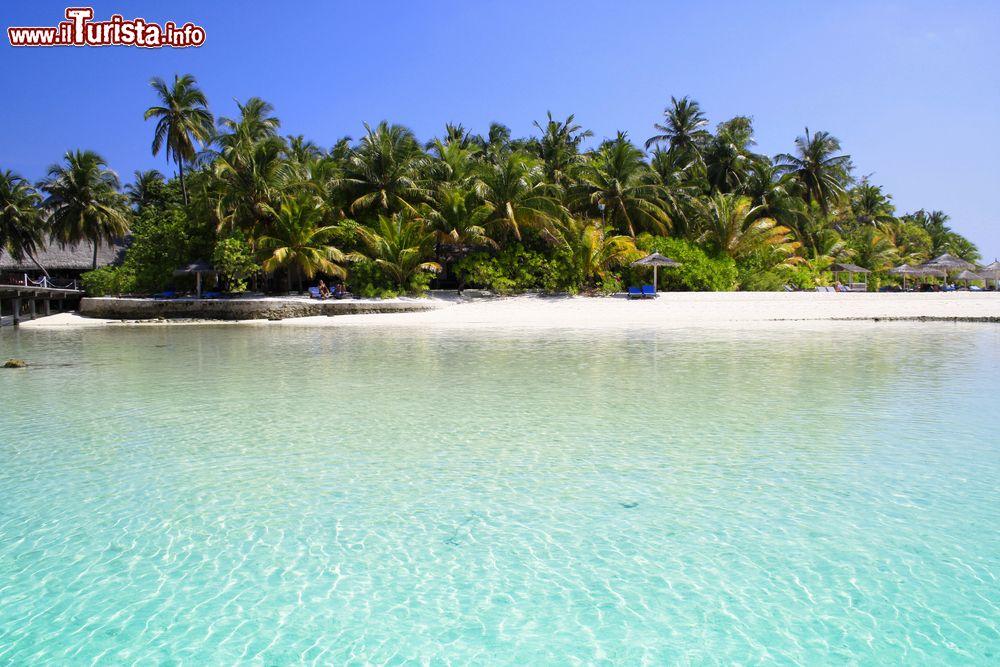 Le foto di cosa vedere e visitare a Atollo di Ari Nord