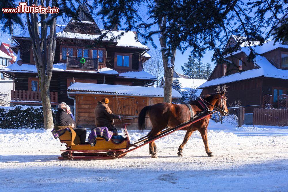 Le foto di cosa vedere e visitare a Zakopane