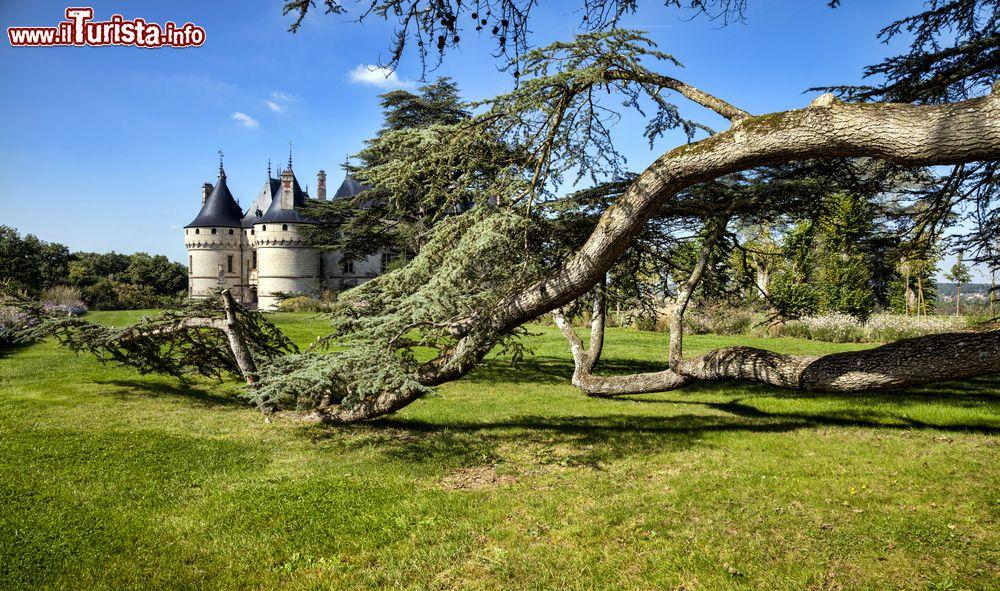 I 9 giardini della loira a loir et cher loiret e touraine - Giardini fantastici ...