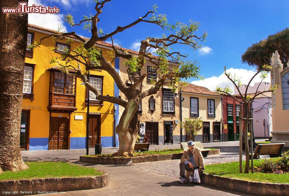Le foto di cosa vedere e visitare a San Cristobal de La Laguna