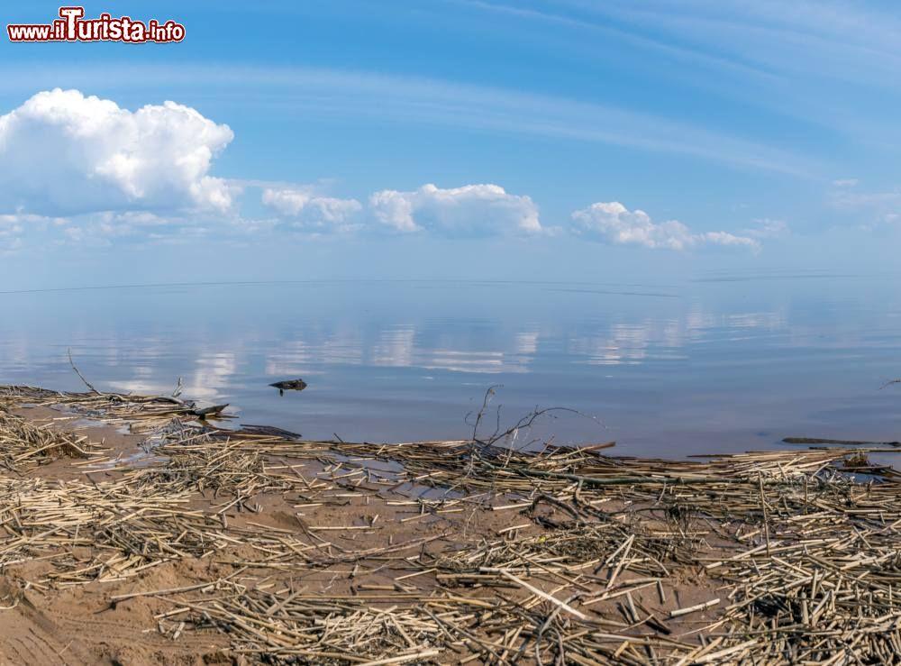 Le foto di cosa vedere e visitare a Velikij Novgorod
