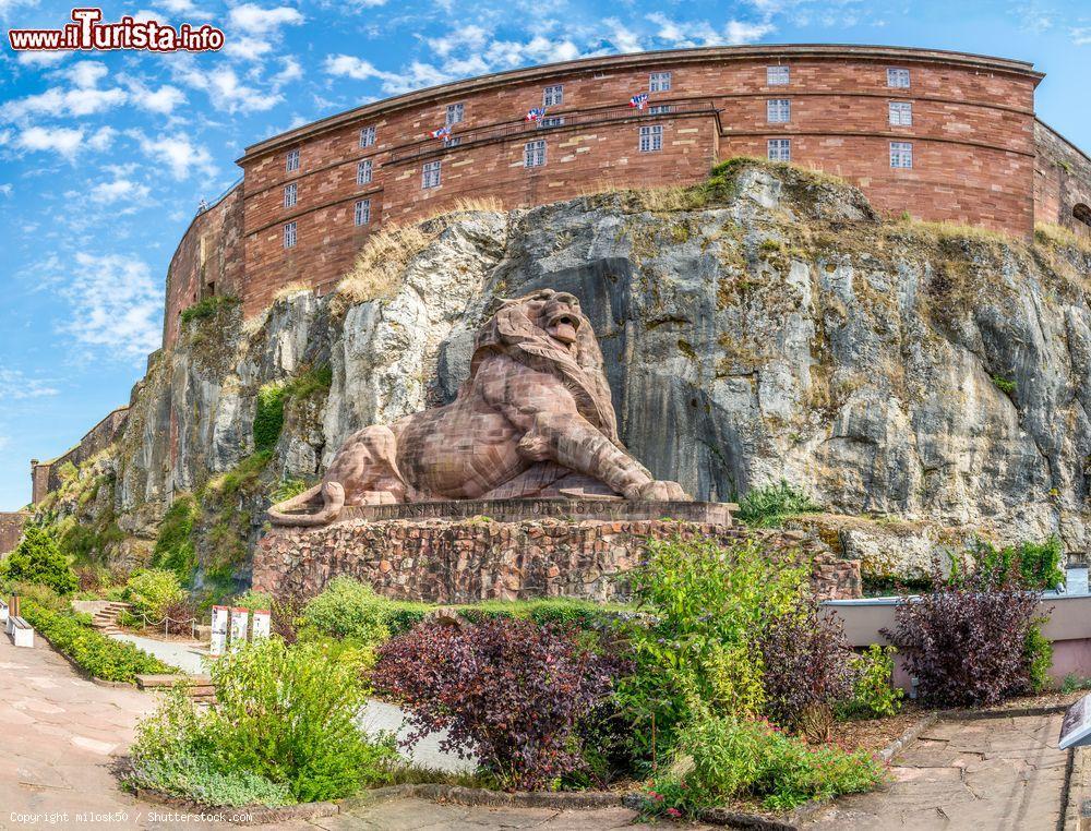 Le foto di cosa vedere e visitare a Belfort