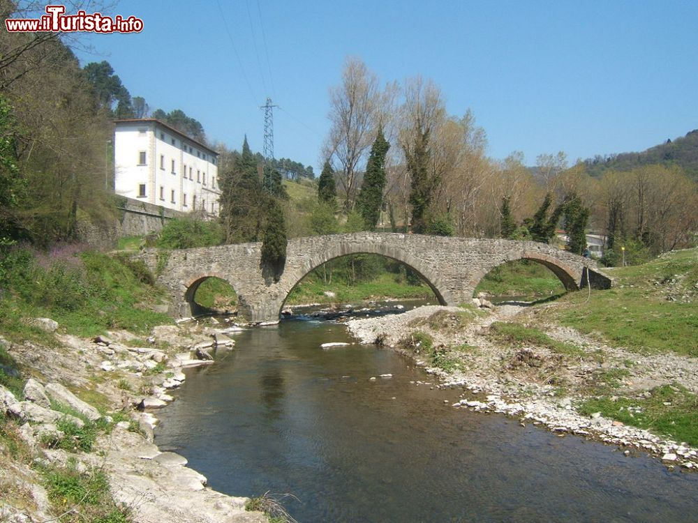 Le foto di cosa vedere e visitare a Cantagallo