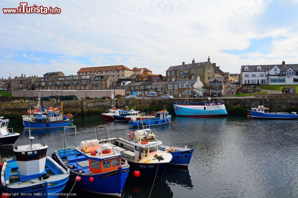 Le foto di cosa vedere e visitare a Seahouses