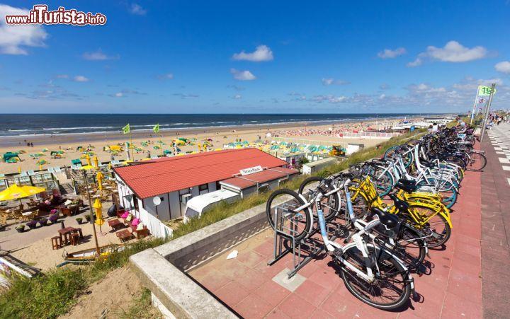 Le foto di cosa vedere e visitare a Paesi Bassi