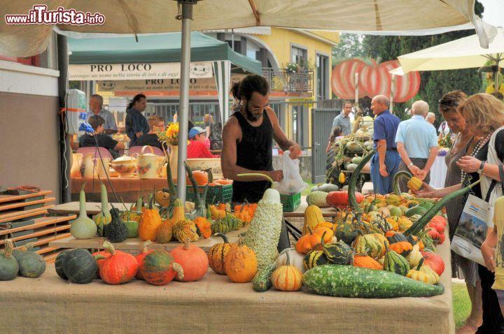 Festa della Zucca Pastrengo