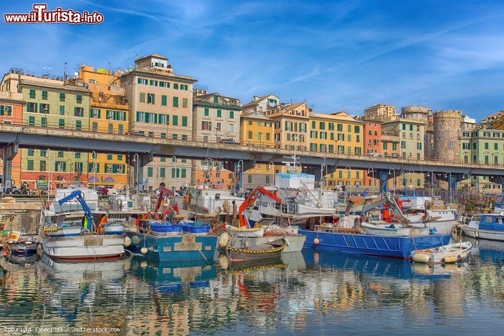 Le foto di cosa vedere e visitare a Genova