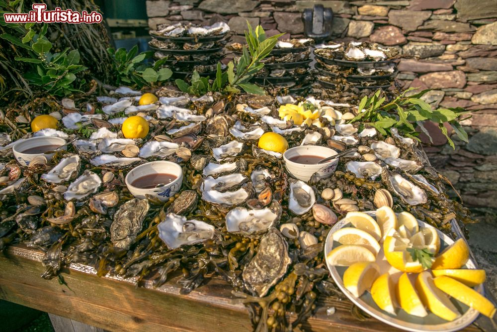 International Oyster & Seafood Festival Galway