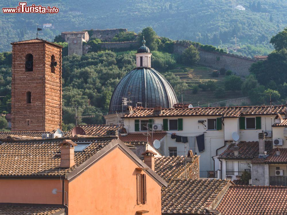 Le foto di cosa vedere e visitare a Pietrasanta