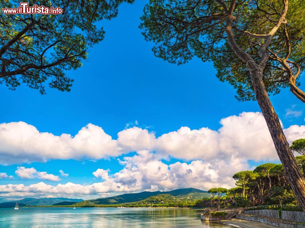 Le foto di cosa vedere e visitare a Punta Ala