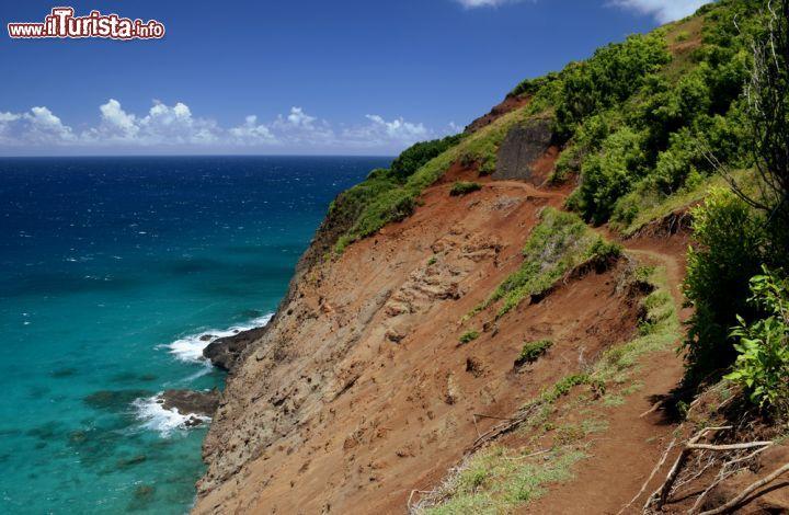 Le foto di cosa vedere e visitare a Kauai